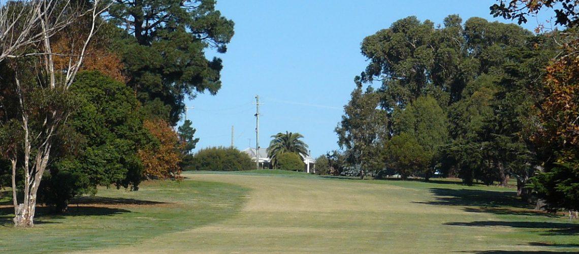 golf course 1 slider